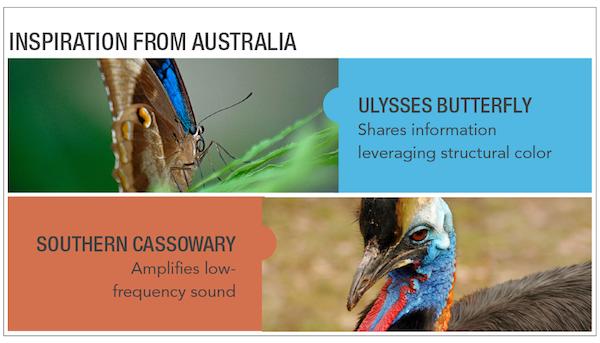 Australia_Webpage_Inspiration_2